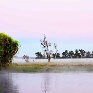 2 Day Kakadu Small Group Tour